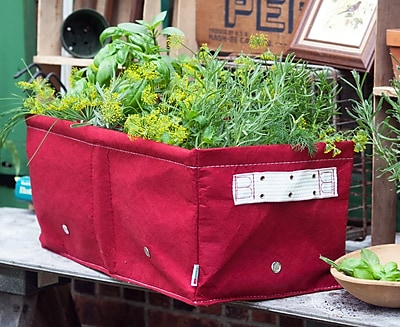 BloemBagz Raised Bed Planter Grow Bag, 12 Gallons, Amaranth (RBP-22)