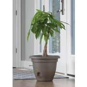 "Bloem Lucca Self Watering Planter, 6"", Chocolate (LP0645)"