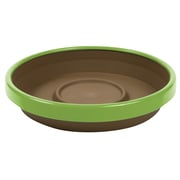 "Bloem Terra Two-Tone Saucer, 12"", Chocolate with Honey Dew (STT1245-25)"