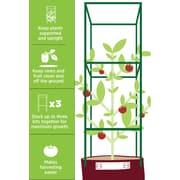 Bloem Tomato Plant Support Adjustable Garden Cage Kit (STK-1)