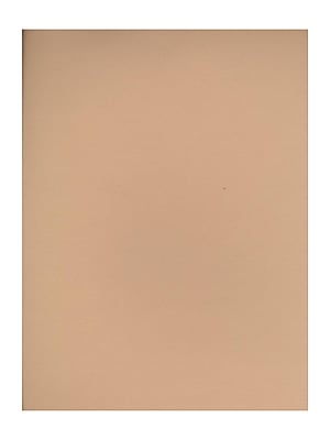 Canson Mi-Teintes Tinted Paper oyster 8.5 in. x 11 in. [Pack of 25](PK25-100511293)