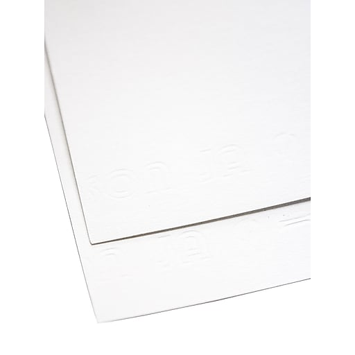 Canson Dessin 200 Pure White Drawing Paper 19 1/2 in. x 25 1/2 in. sheet [Pack of 10](PK10-100511129)
