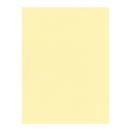 Fabriano Tiziano Drawing Paper cream [Pack of 10](PK10-71-33002)