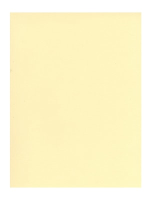 Canson Mi-Teintes Tinted Paper pale yellow 19 in. x 25 in. [Pack of 10](PK10-100511217)