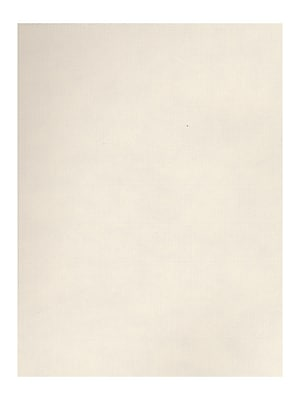 Strathmore Charcoal Paper white [Pack of 25](PK25-60-130)