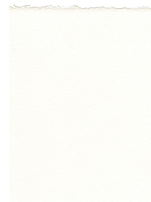 Fabriano Artistico Watercolor Paper extra white 140 lb. rough 22 in. x 30 in. [Pack of 10](PK10-71-61910279)