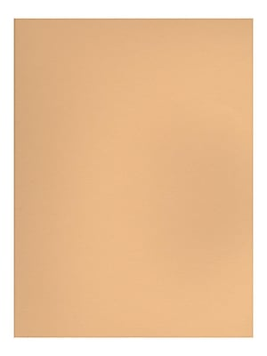 Canson Mi-Teintes Tinted Paper champagne 19 in. x 25 in. [Pack of 10](PK10-100511249)