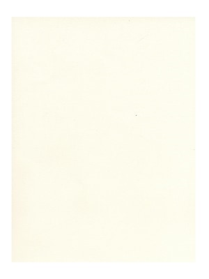 Strathmore 500 Series Pure Paper Tints white [Pack of 25](PK25-528-1)