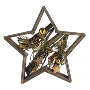 Northlight Decorated Mixed Branches in Star Wood Frame Christmas Table or Wall Decoration (32620787)