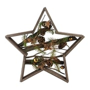 Northlight Decorated Mixed Branches in Star Wood Frame Christmas Table or Wall Decoration (32621879)
