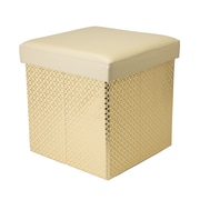 Simplify Collapsible Storage Ottoman, Metallic, Ivory, (F-0667-IVORY)
