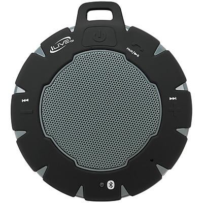 iLive ISBW157B Waterproof Bluetooth Speaker (Black)