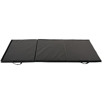 Sunny Health & Fitness Folding Gym Mat, NO. 064