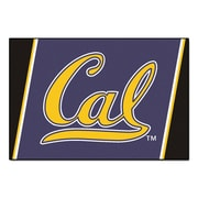 FANMATS University of California - Berkeley Nylon 5x8 Rug, Multi-Colored (6802)