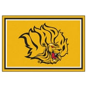 FANMATS University of Arkansas at Pine Bluff Nylon 5x8 Rug, Multi-Colored (18719)
