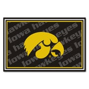 FANMATS University of Iowa Nylon 5x8 Rug, Multi-Colored (6285)