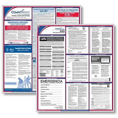 ComplyRight™ Federal & State Labor Law Poster Kit, Texas, Spanish