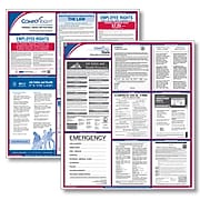 ComplyRight™ Federal & State Labor Law Poster Kit, California (E50CA)