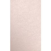 LUX 8 1/2 x 14 Cardstock 50/Pack, Coral Metallic - Stardream® (81214-C-M207-50)