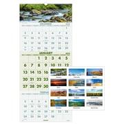 "2019 AT-A-GLANCE® Scenic 3-Month Wall Calendar, 14 Months, December Start, 12"" x 27"", Wirebound (DMW503-28-19)"