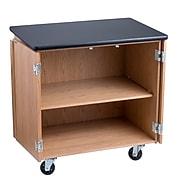 """NPS®  36""""H Mobile Science Cabinet With Adjustable Height Shelf, High Black Top/Light Oak Frame (MSC24361)"""