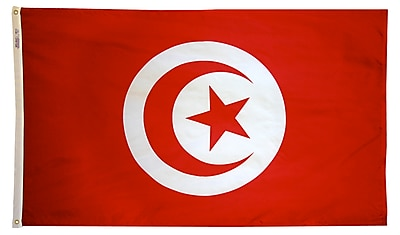 Annin Flagmakers Tunisia Flag, 3 x 5 ft., Nylon (198585)