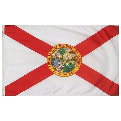 Annin Flagmakers Florida State Flag, 4 x 6 ft., Nylon (140970)