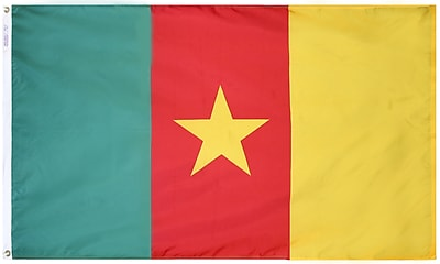 Annin Flagmakers Cameroon Flag, 4 x 6 ft., Nylon (191269)