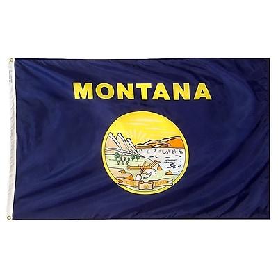 Annin Flagmakers Montana State Flag, 4 x 6 ft., Nylon (143170)