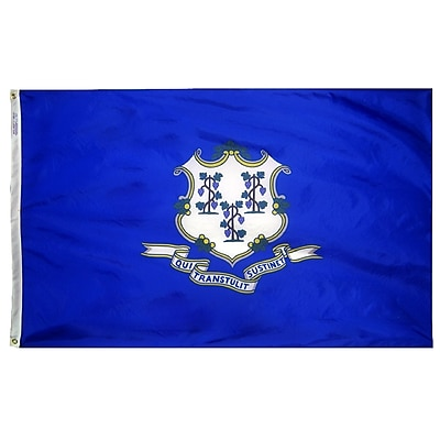 Annin Flagmakers Connecticut State Flag, 3 x 5 ft., Nylon (140760)