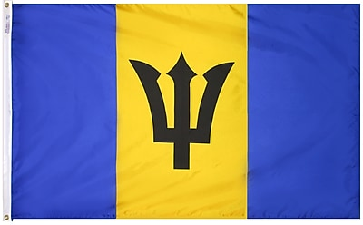 Annin Flagmakers Barbados Flag, 4 x 6 ft., Nylon (190541)