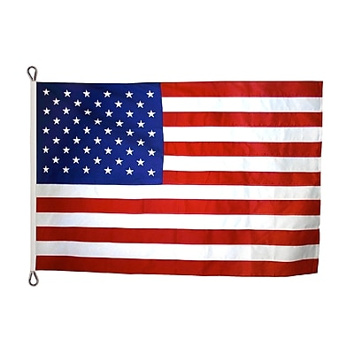 Annin Flagmakers American Flag, 20 x 38 ft., Nylon (2410)