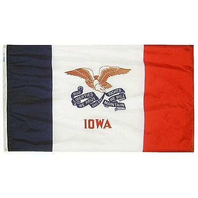 Annin Flagmakers Iowa State Flag, 3 x 5 ft., Nylon (141760)