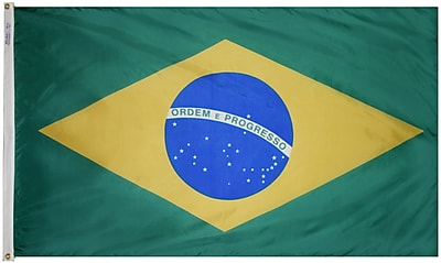 Annin Flagmakers Brazil Flag, 4 x 6 ft., Nylon (190845)