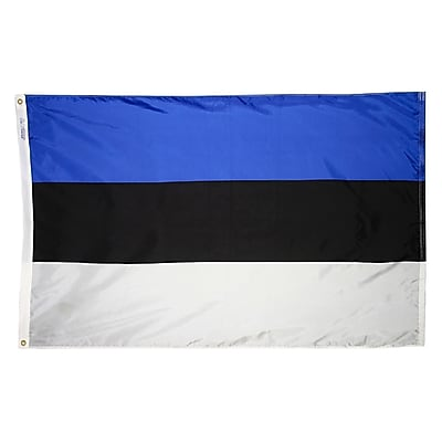 Annin Flagmakers Estonia Flag, 3 x 5 ft., Nylon (221343)