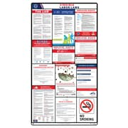 ComplianceSigns® 2018 Virginia Labor Law Poster (with White Header)