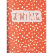 """TF PUBLISHING JULY 2018-JUNE 2019 SO MANY PLANS MONTHLY PLANNER 7.5"""" X 10.25"""" (19-4240A)"""