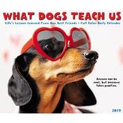 "2019 Willow Creek Press 4.25"" x 5.25"" What Dogs Teach Us Box Calendar (03367)"