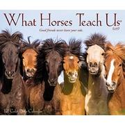"""2019 Willow Creek Press What Horses Teach Us 4.25"""" x 5.25"""" Box Calendar (03374)"""