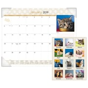 """AT-A-GLANCE® Kittens Monthly Desk Pad, 12 Months, January Start, 22"""" x 17"""" (DMD167-32-19)"""