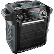 Ion Audio Pathfinder All-Weather Speaker IPA79A, Bluetooth