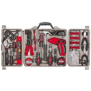 Apollo Tools Household Tool Kit with 4.8 Volt Screwdriver, 161 Piece (DT0738)