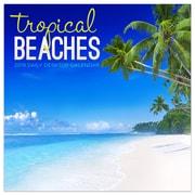 "2019 TF Publishing 5.5"" X 5.5"" Tropical Beaches Daily Desk Calendar (19-3097)"