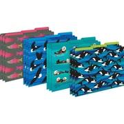 Barker Creek Sea & Sky File Folders, 1/3 Cut Letter-Size Multi-Design, Fashion, 12/Pack (BC1377)