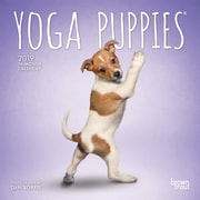 2019 BrownTrout  Yoga Puppies, Monthly Mini Wall Calendar