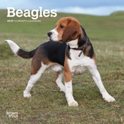 2019 BrownTrout  Beagles Monthly Mini Wall Calendar