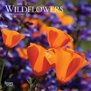 2019 BrownTrout  Wildflowers, Monthly Mini Wall Calendar