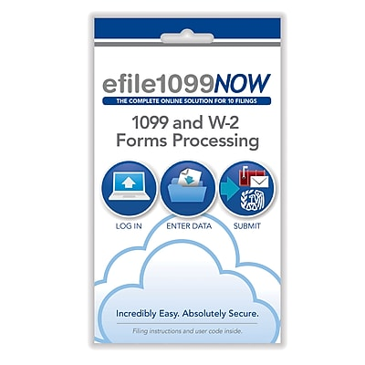 e-File 2018 1099NOW, Online 1099 and W-2 Forms Processing (11015)