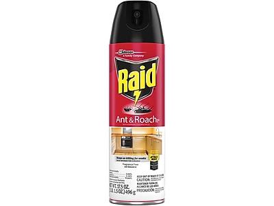 Raid Ant & Roach Killer 26 Aerosol for Ants & Roaches, Fragrance Free, 17.5oz