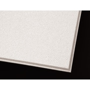 Armstrong Dune Second Look Angled Tegular 2'x4' White Ceiling Tile, 10 Count (2712A)